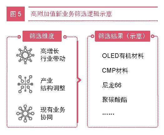 化工新材料企业突围战 三大策略致胜未来07-PRA